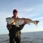 New Orleans redfish